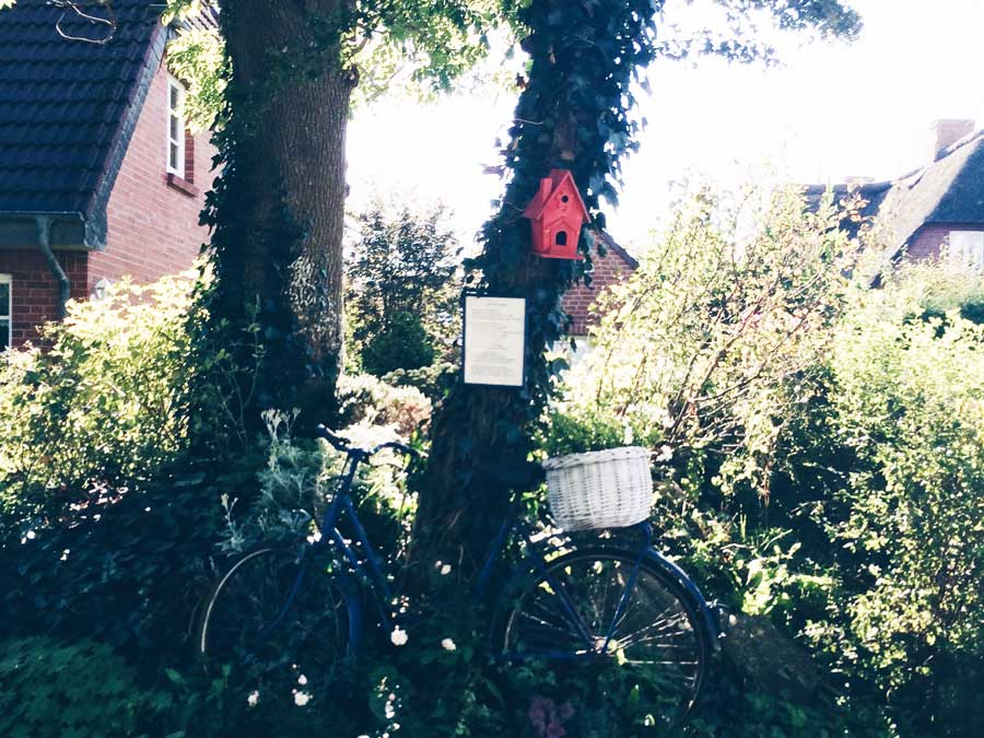 rotes vogelhaus und fahrrad