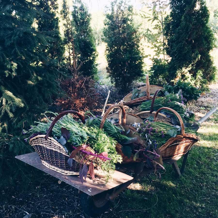 Körbe mit Blumen und Gemüse auf einer Karre