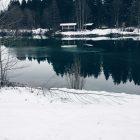 See mit verschneitem Ufer und Waldanfang