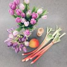 Tulpen und einige Stangen Rhabarber